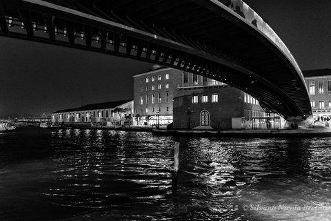 Venezia - Ponte Calatrava