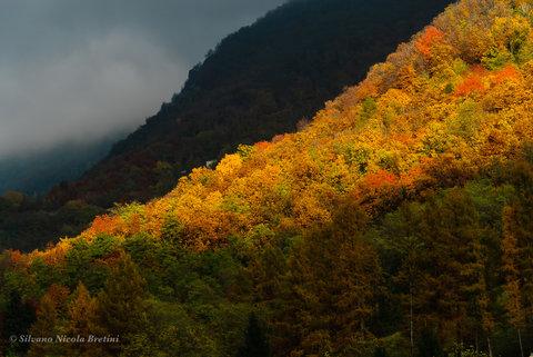 Autunno in collina