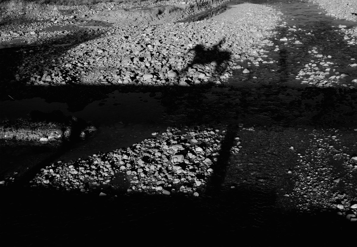 Cavaliere-sul-Ponte.jpg
