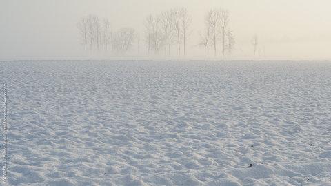 campo innevato di primo mattino
