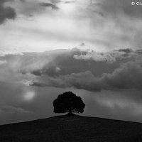 Paesaggi_13_02_09_002.jpg