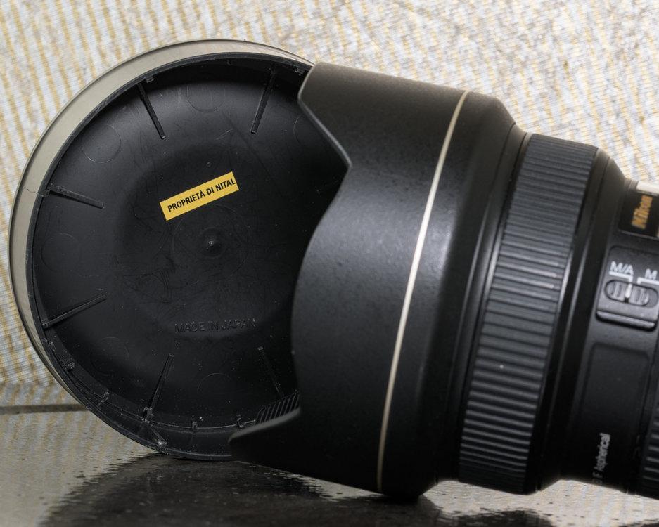 5a84bf080a77b_202-_D5K8816105mm1-160secaf-16MaxAquilaphoto(C)_.thumb.jpg.1df4eb6d0cd4e66a7662f4b0bbb5f5b3.jpg