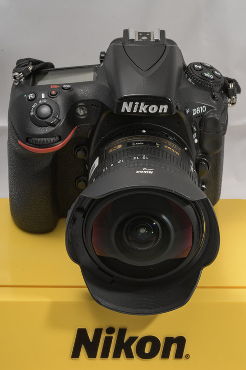 5a9033e1740d9_006-_D5K9255105mm1-250secaf-20MaxAquilaphoto(C)_.thumb.jpg.7b499ed248998039ea629ebd7d6fff16.jpg