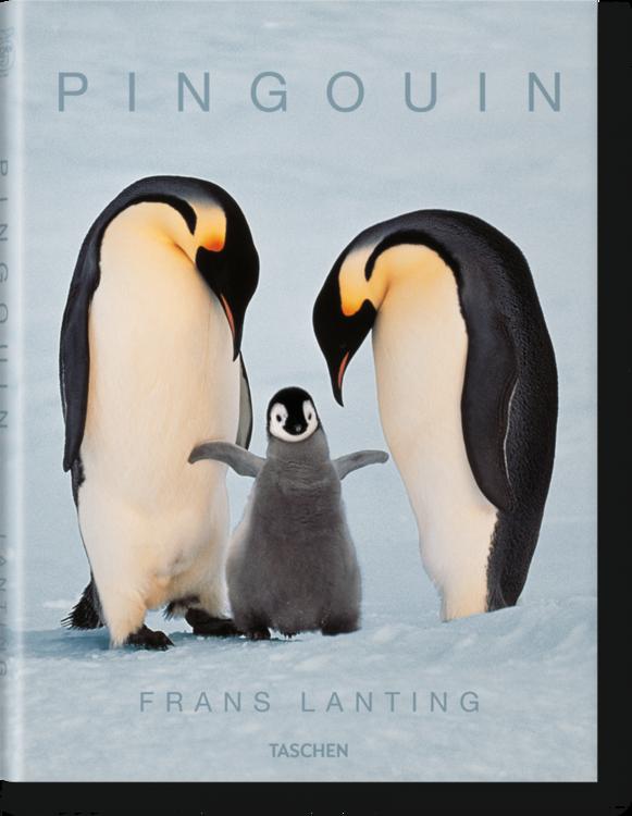 25_lanting_penguin_fo_f_3d_45715_1503121758_id_907918.thumb.png.55e2d04c067464d91732396218015a23.png