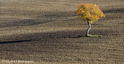 Ancora Val d'Orcia......