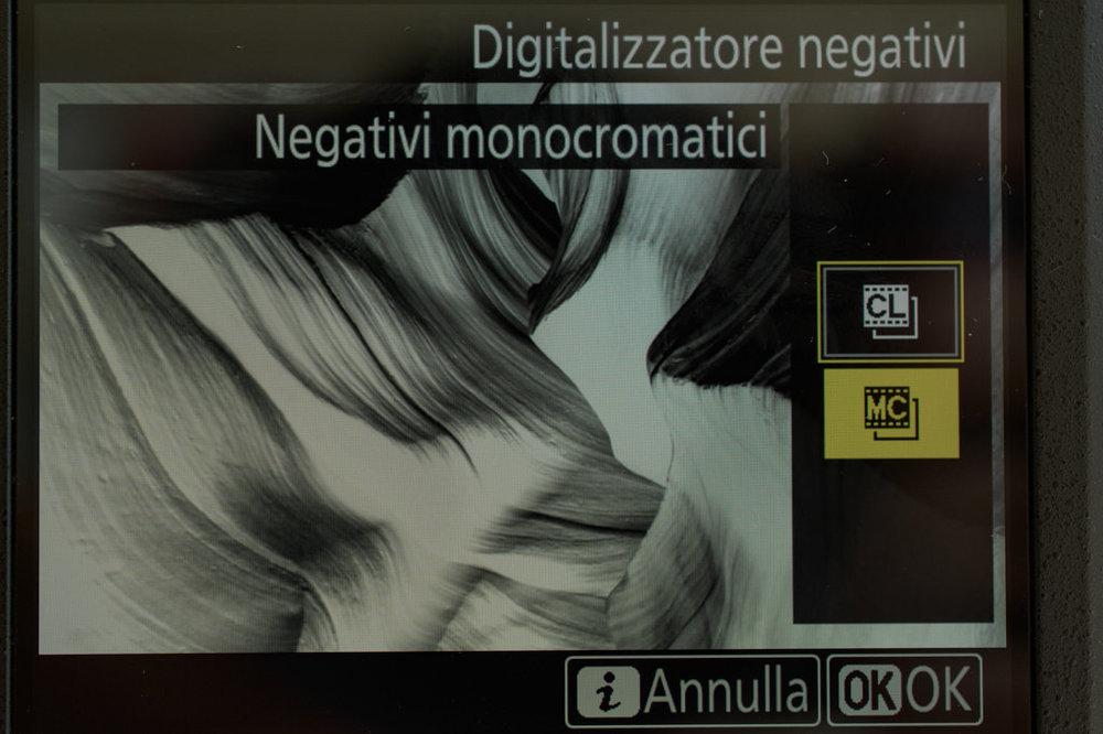 274873932_02425052018-_D5K0613MaxAquilaphoto(C).thumb.jpg.39586829aa765d7f18981cb3adf4d112.jpg