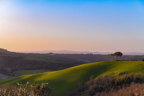 Val d'Orcia-0135.jpg