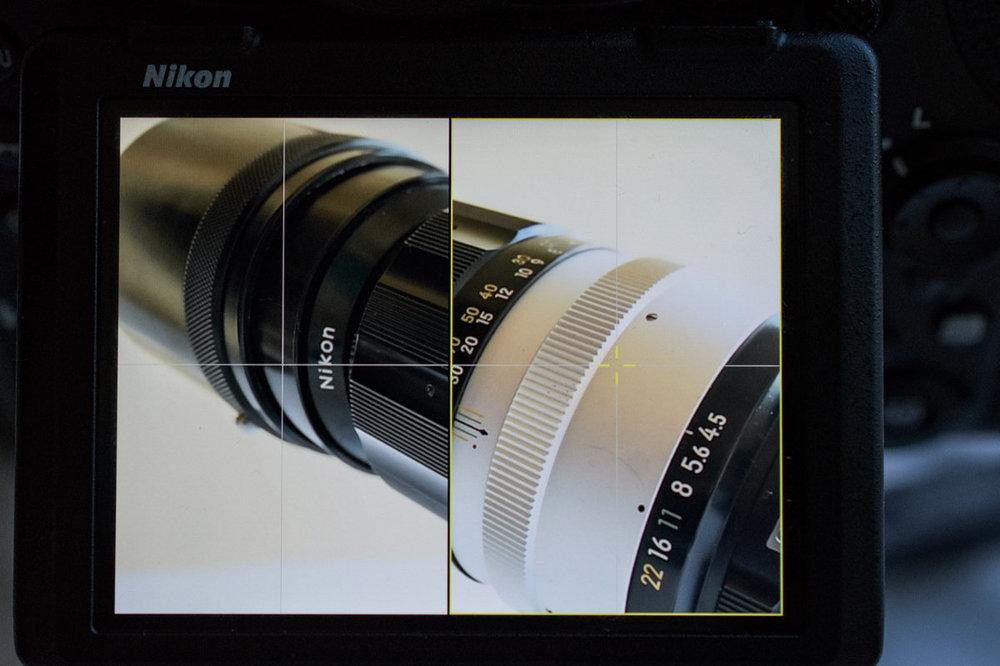 1410342053_20817062018-_D5K0757MaxAquilaphoto(C).thumb.jpg.071765845d83e1a0bacffb14359dbf3d.jpg