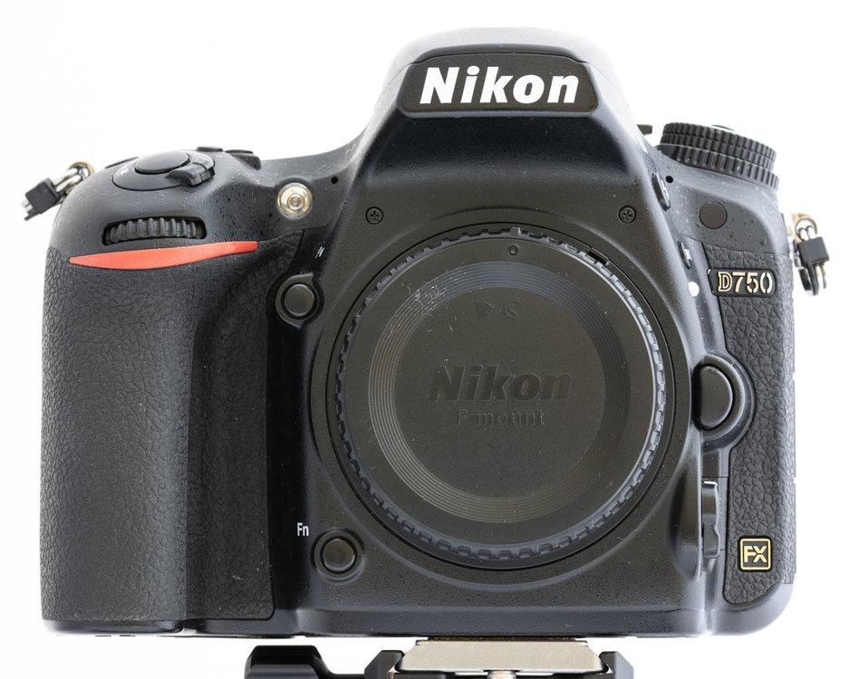 1880182281_035-_85K1395105mm1-25secaf-16MaxAquilaphoto(C)_.thumb.jpg.2b7a3068a359256cc886abb6c32dc47e.jpg