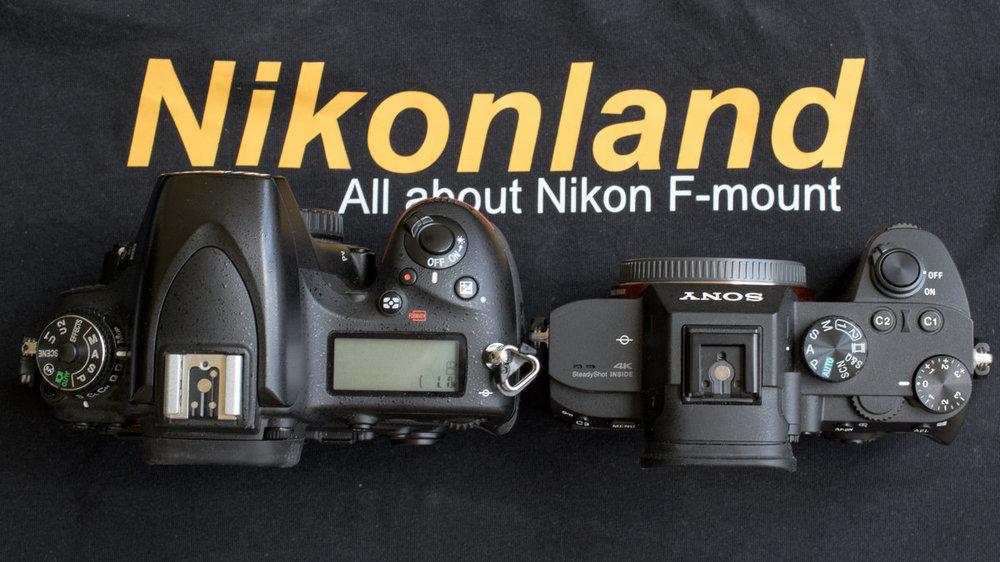 629199858_021-_D5K079740mm1-125secaf-11MaxAquilaphoto(C)_.thumb.jpg.d8afcabb78ee43a6b6d6d9d26643b8b3.jpg