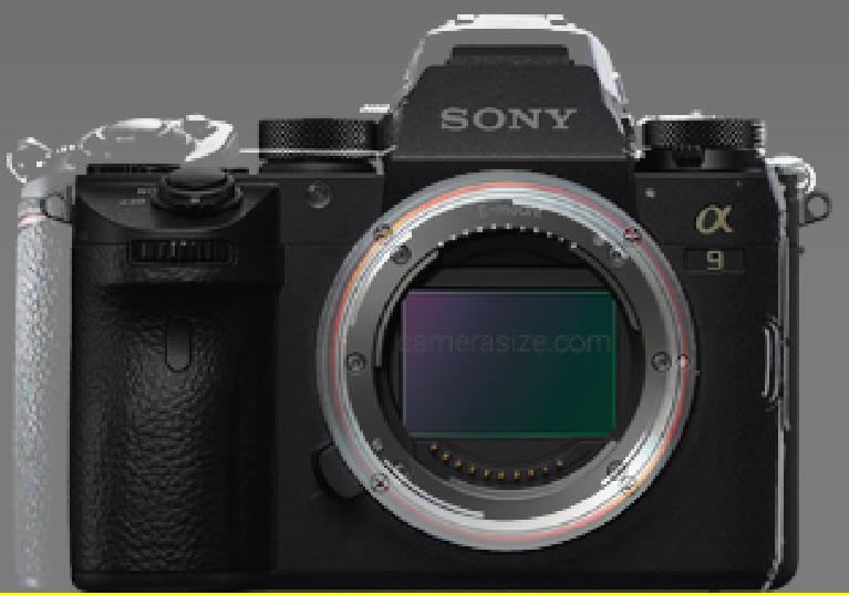 791233221_Nikon-mirrorless-camera-compared-with-Sony-a9--Drororomon.png.618595e047bfa73ac8e6cdf4736c6d68.png