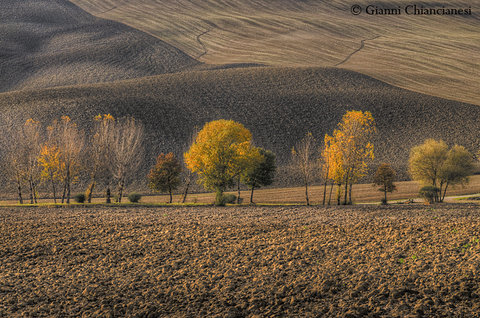 Autunno....Val d'Orcia