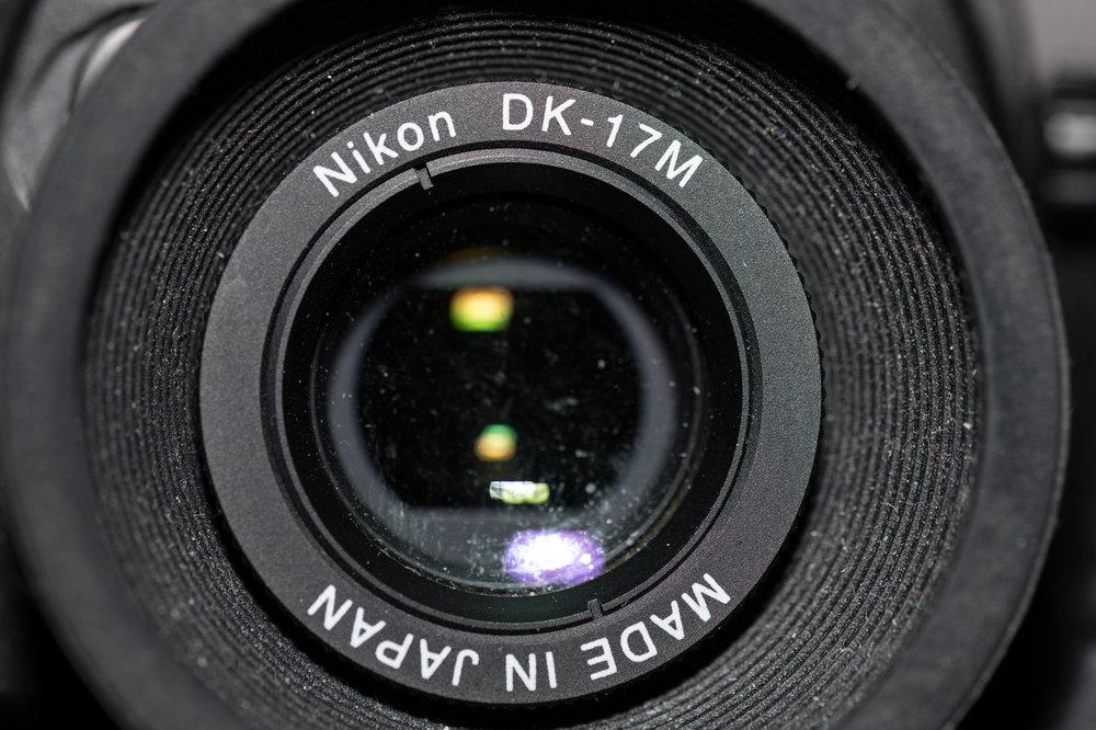 2081298031_01703112018-DSC_1629MaxAquilaphoto(C).thumb.jpg.29ed22ff2425a604829d20d039114c57.jpg
