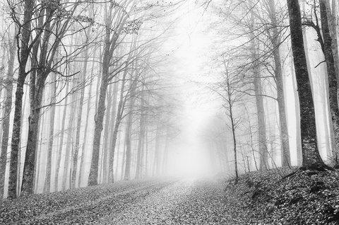 """Strada della """"Mia"""" Montagna..."""