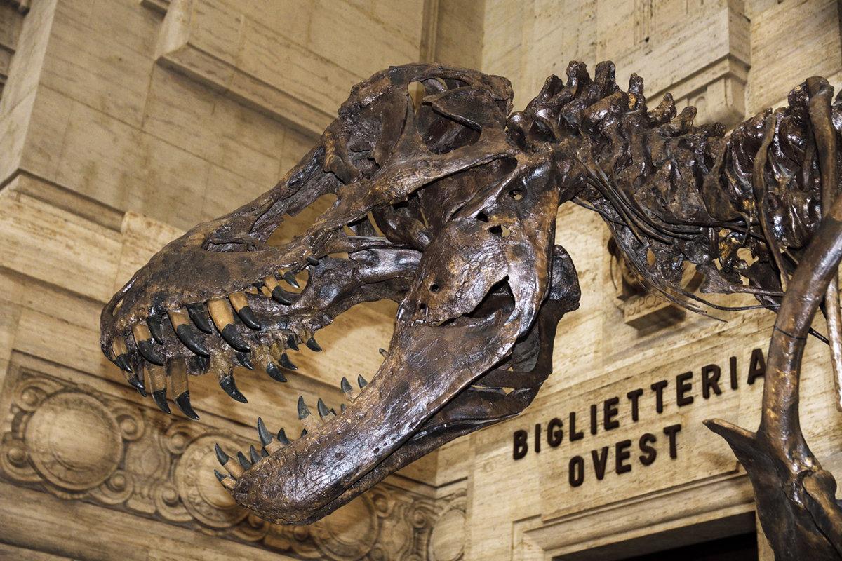 [reportage] Il Tirannosauro in Stazione