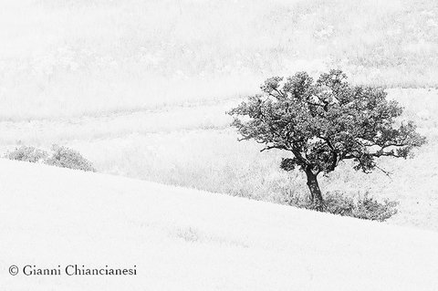 Luce...Val d'Orcia