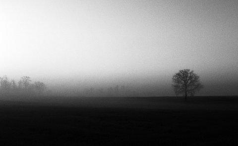 Alba....Nebbia...