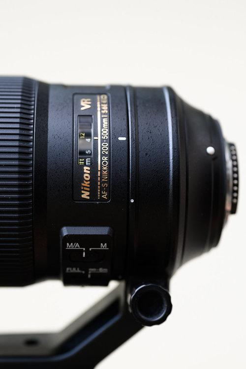 1256193328_10327032019-_Z6H9028MaxAquilaphoto(C).thumb.jpg.7adb6b87f4de925e7ba3c5b44d4bd973.jpg