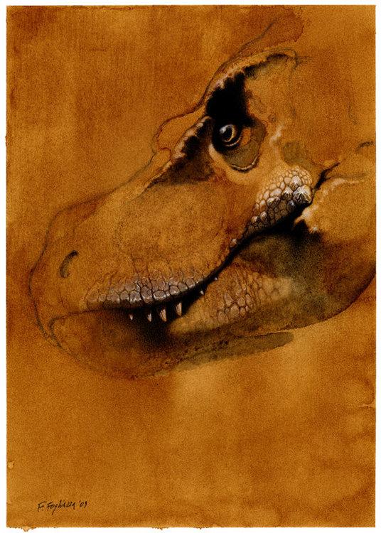 T-Rex.thumb.jpg.9b4ad3edd7104bb491c0f637e5e960b6.jpg