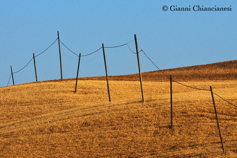 Val d'Orcia_2011_06_27