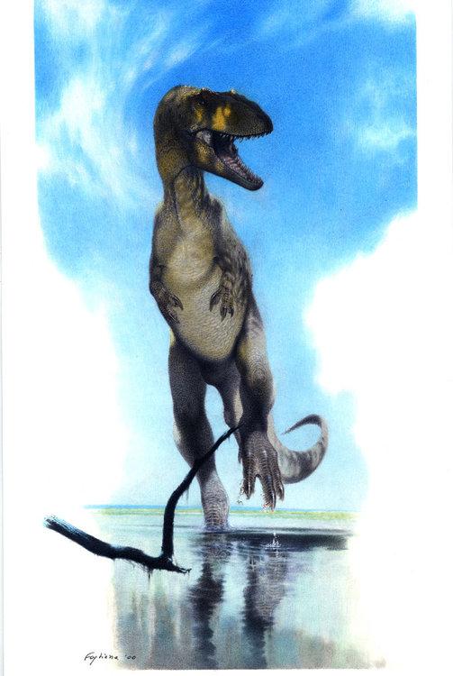 saltriosaurus.thumb.jpg.cc29826c3558639a3961793d36dbc1ba.jpg