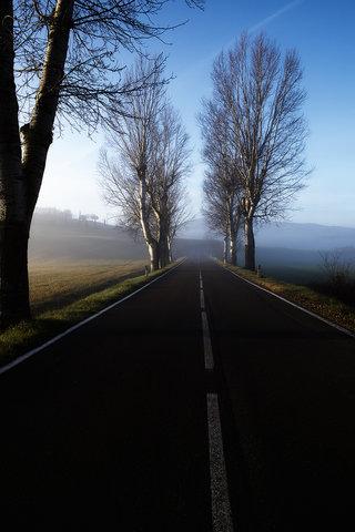 Strada, mattina, in Val d'Orcia...