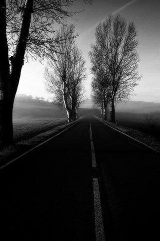 Strada...Mattina...Val d'Orcia..