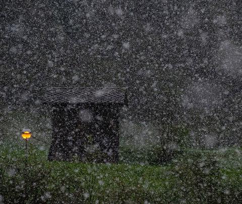 Neve di primavera