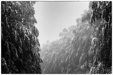 Neve a Maggio....