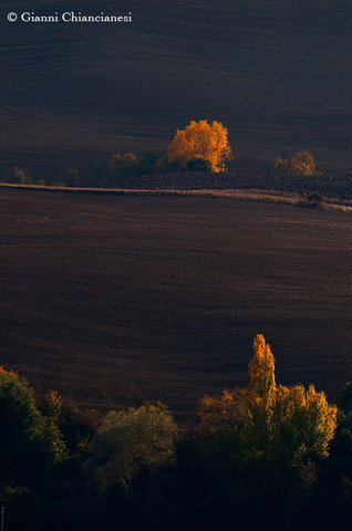 Val d'Orcia....;-)