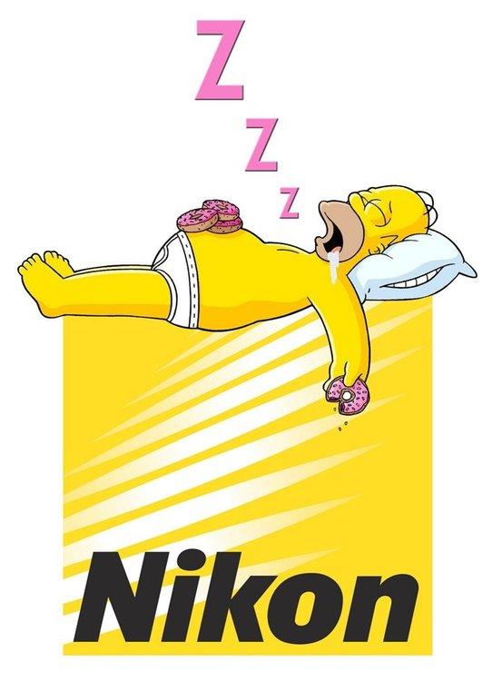 Nikon-logo-sleeping.thumb.jpg.f1262e7bdfe0f720e425e374f7b0e907.jpg