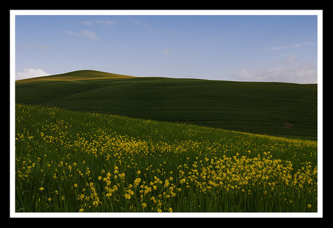 Val d'Orcia....