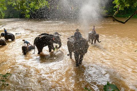 Thailandia-5410.jpg