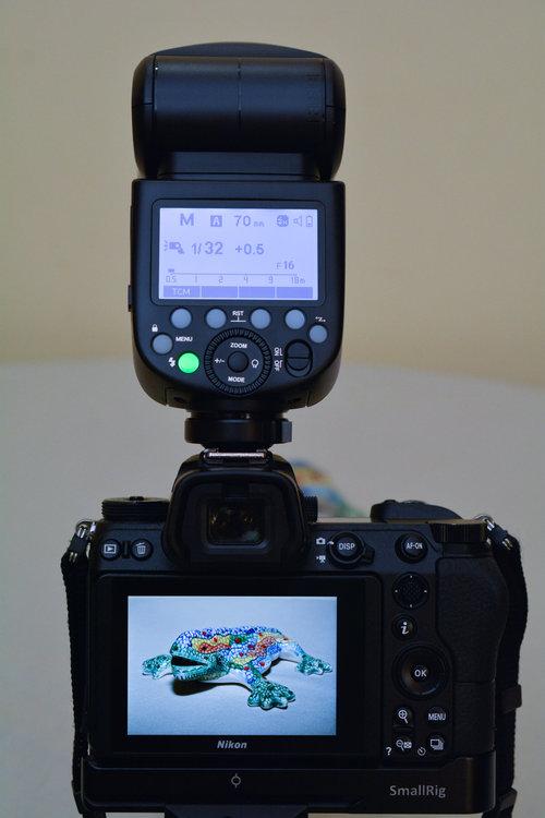1798670325_00420102019-_D7M6153MaxAquilaphoto(C).thumb.jpg.a55ac0d39b634916ef82c921a8b9ba37.jpg