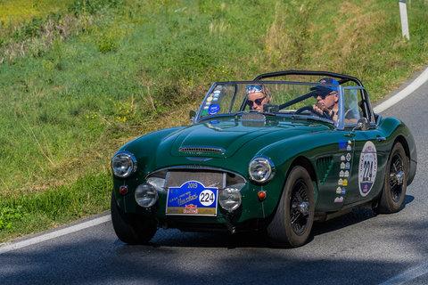 Austin Healey 3000 Mk 1 del 1959