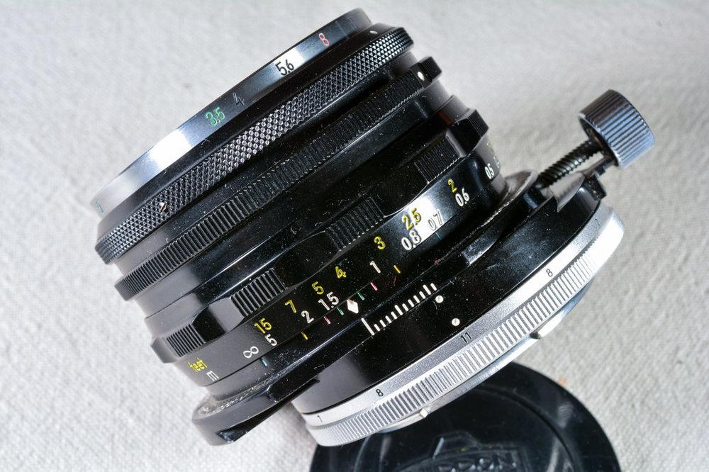 803597990_00906112019-_D7M6535MaxAquilaphoto(C).thumb.JPG.ca9e79bb872a3b4643805792a9b2a734.JPG