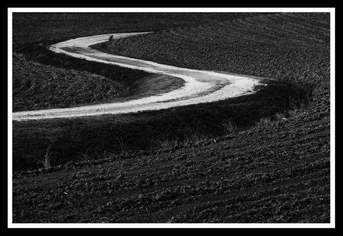 Strada bianca in Val d'Orcia.....