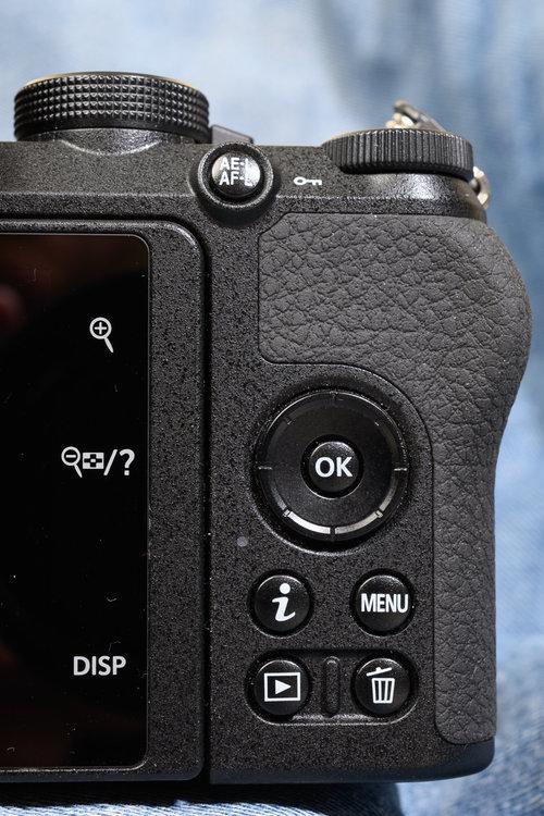 005  07122019 -_Z6H6234  Max Aquila photo (C).JPG