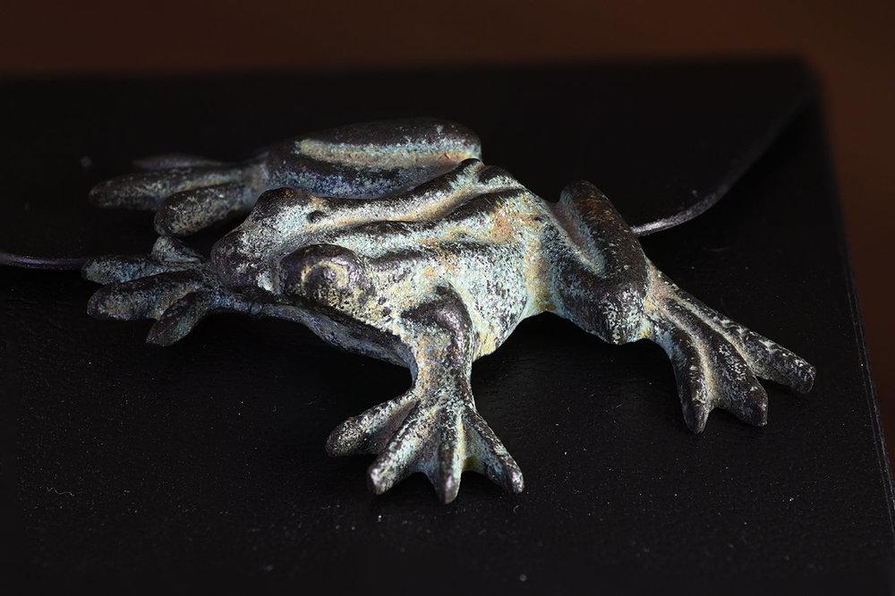 stackfrog.thumb.jpg.2f7ba5190d551057ad69668868f5aea2.jpg