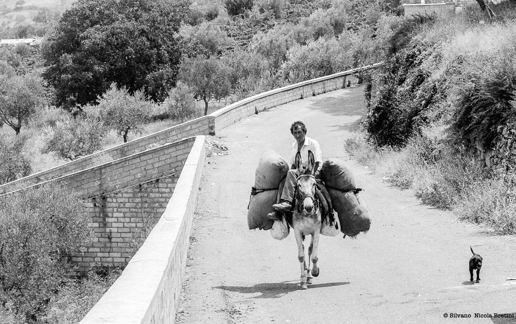 Muro Lucano 1987