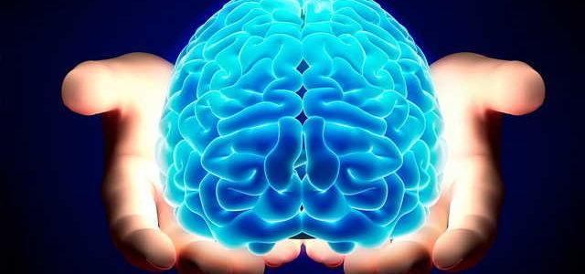cervello-1_opt-640x300.jpg.b86ec8fa9e2e052c4f9d7356295a0e40.jpg