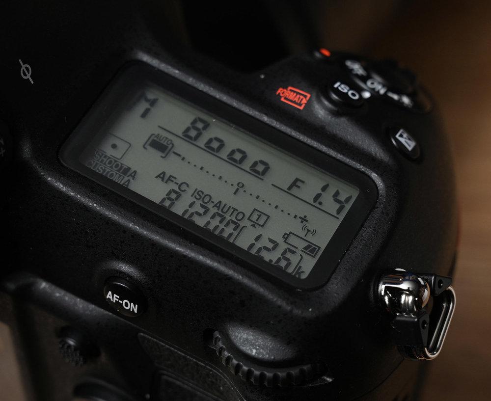 Z6H_6095.JPG
