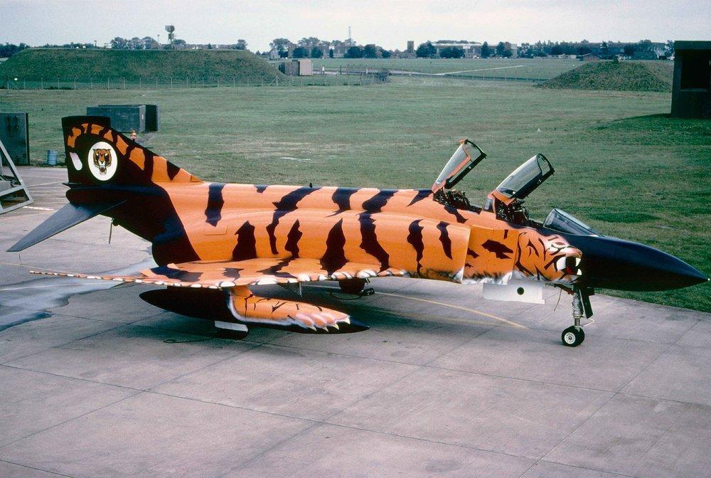 tiger10.thumb.jpg.d11dd47e9f3b6d826aa97d8d557ff2af.jpg