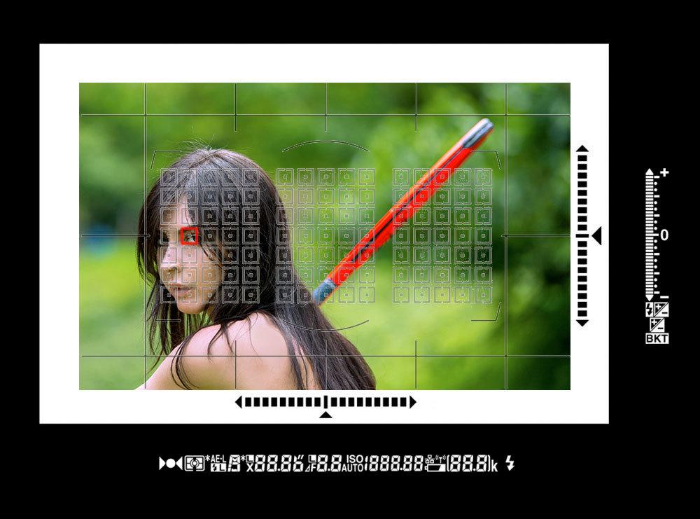 Nikon-D6_Finder-1000x741_XXX.jpg