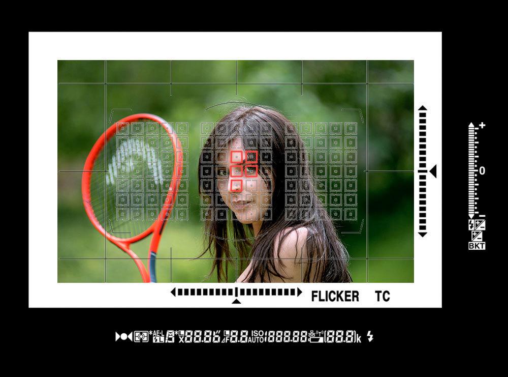Nikon-D6_Finder-1000x741_XXX2.jpg