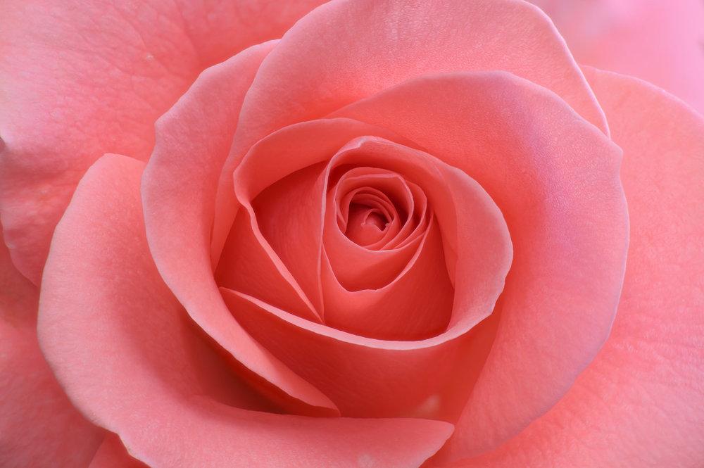 2020-07-05 07-12-01 red.jpg