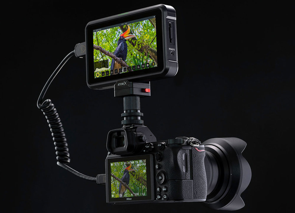 Atomos-Shinobi-on-Nikon-Z6-Z7-mirrorless-camera.thumb.jpg.9abd2fc93cbcedb551dfe4d4151f09c3.jpg