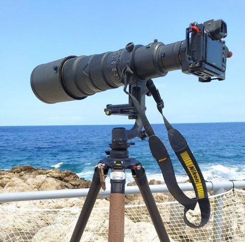 Z6 e Nikon 500mm f/4 duplicato a 1000: people