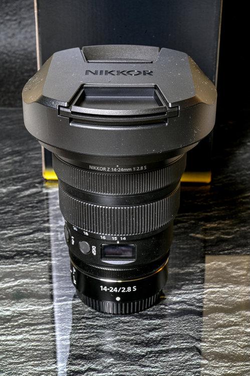 135022987_02606112020-_Z6L0767MaxAquilaphoto(C).thumb.JPG.bc1042d51c7abe44a49bf078aa774d7f.JPG