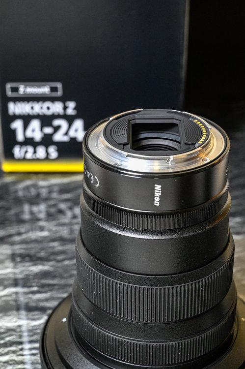 678111207_02706112020-_Z6L0774MaxAquilaphoto(C).thumb.JPG.700e65c5b2a582b41b072d7d0c39cf29.JPG
